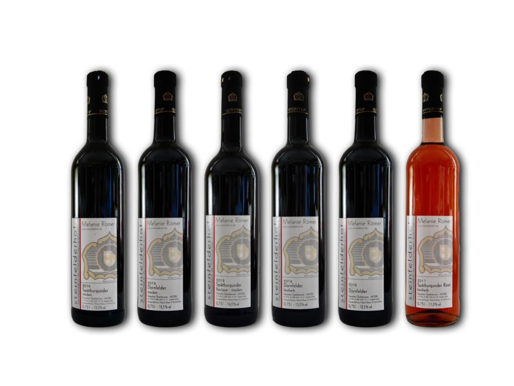 Sechs Flaschen des Weinprobierpaket rot