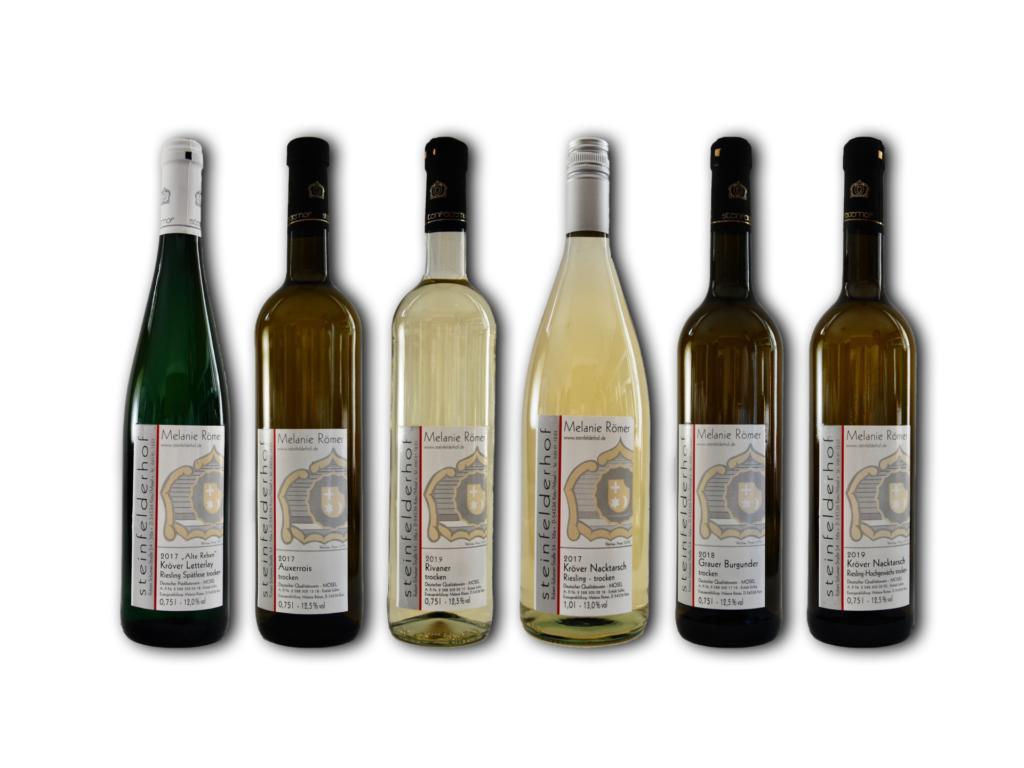 Sechs Flaschen des Weinprobierpaket trocken